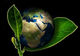 Passerelle in acciaio: parliamo di sostenibilità ambientale
